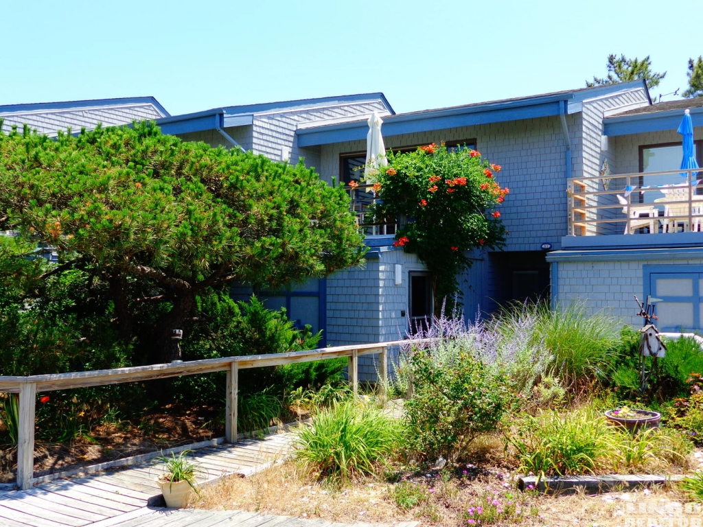 Pet friendly rentals for 212 salon oak park